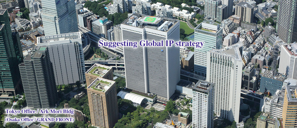Providing IP Solutions expertly tailored to protect and build value